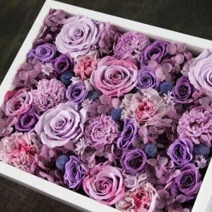 【purple】